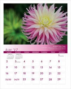 2017 Hello Dahlia! Calendar Page