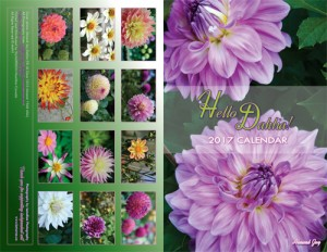 lumaRae Hello Dahlia! 2017 Calendar