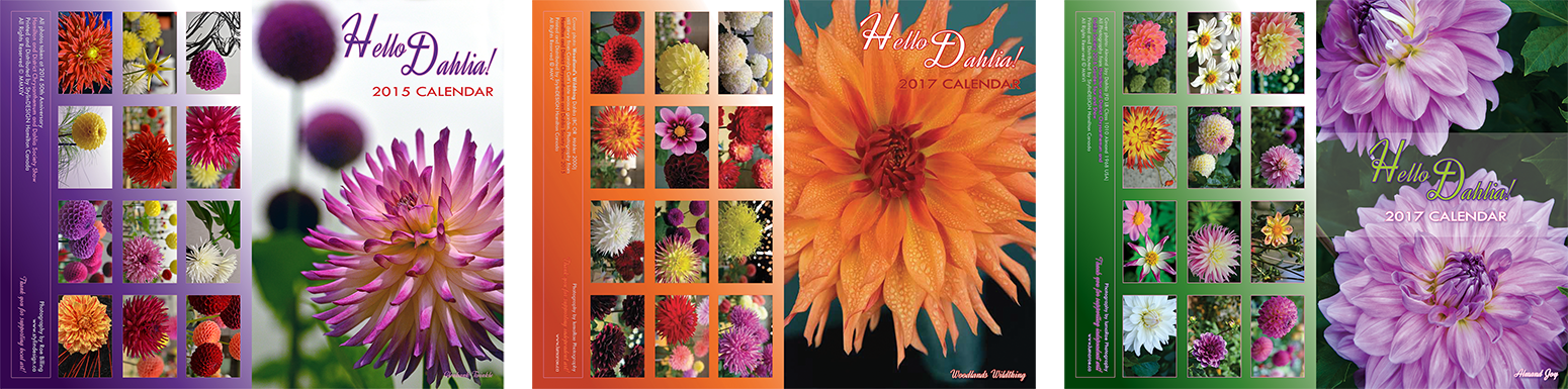lumaRae Photography Hello Dahlia! Calendars