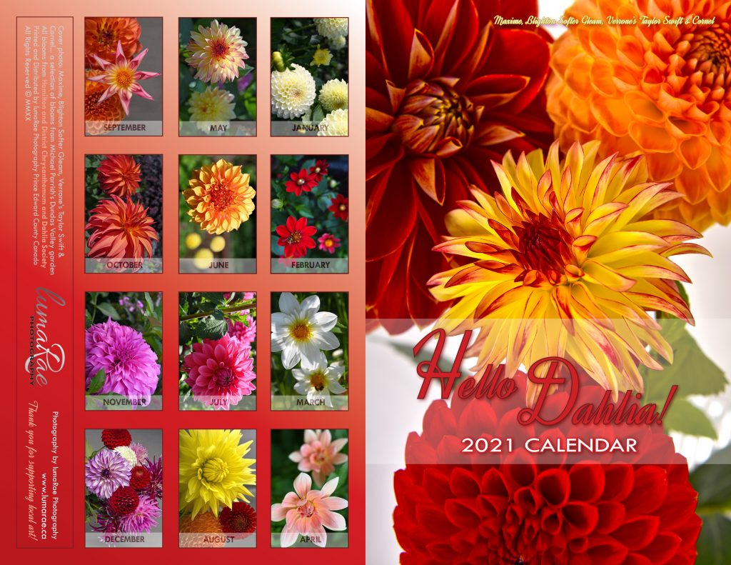 2021 Hello Dahlia! Calendar Cover